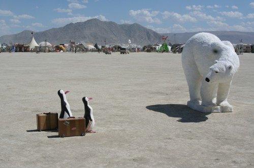 Desert Polar Creatures