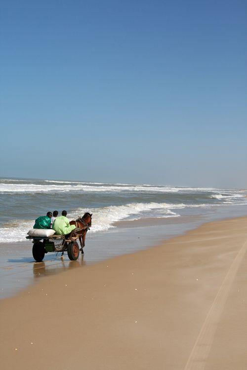 Beachcart